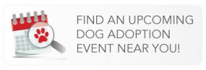 Find an upcoming dog adoption event near you